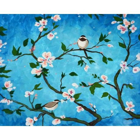 randevú madár
